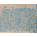 Possible ceruleum bleu