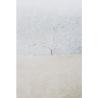 horizons 9