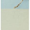 horizons 14