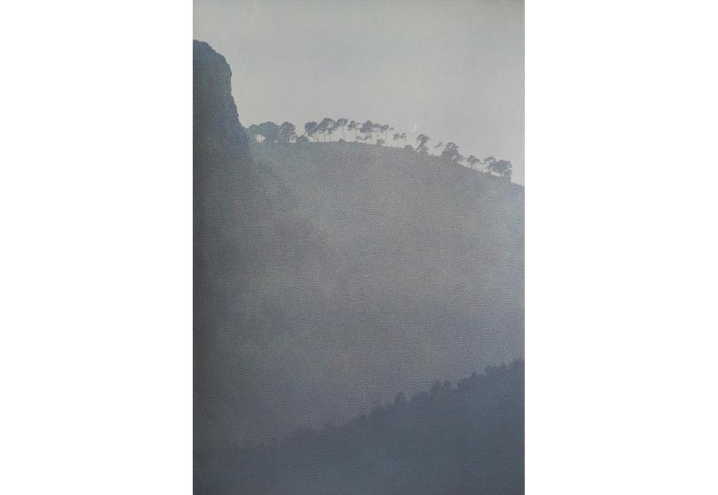 Les pins élancés souhaitent la bienvenue à la lune