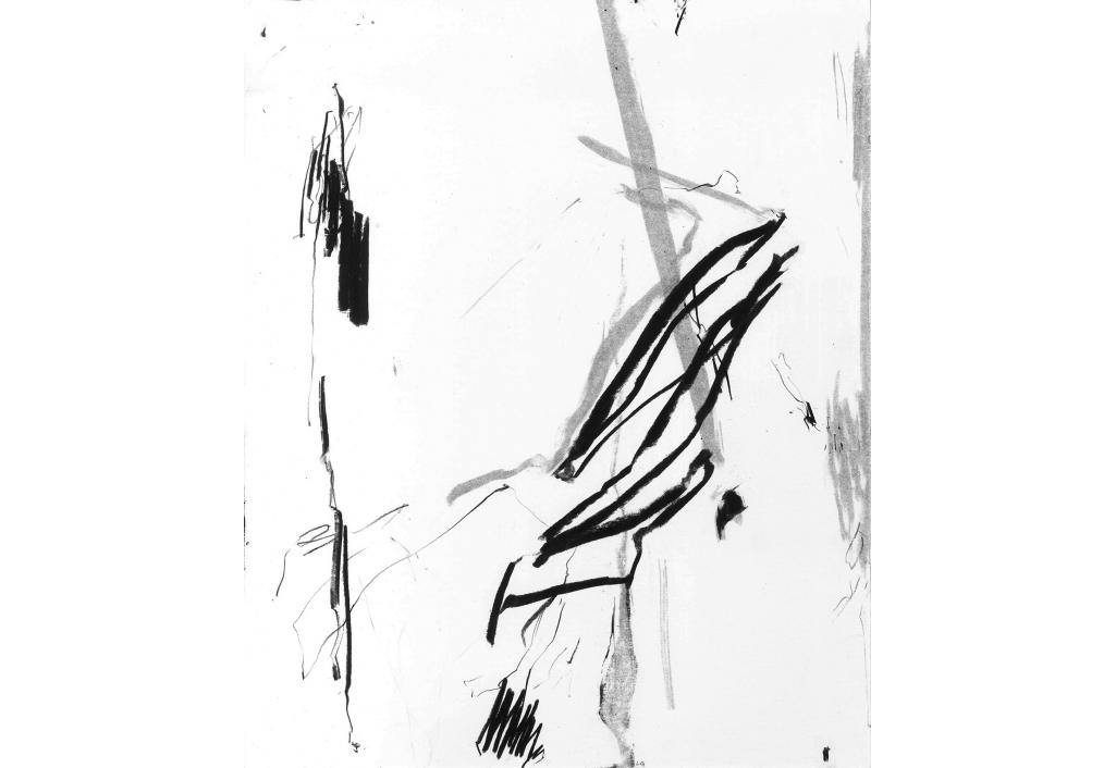 Œuvre au noir 2