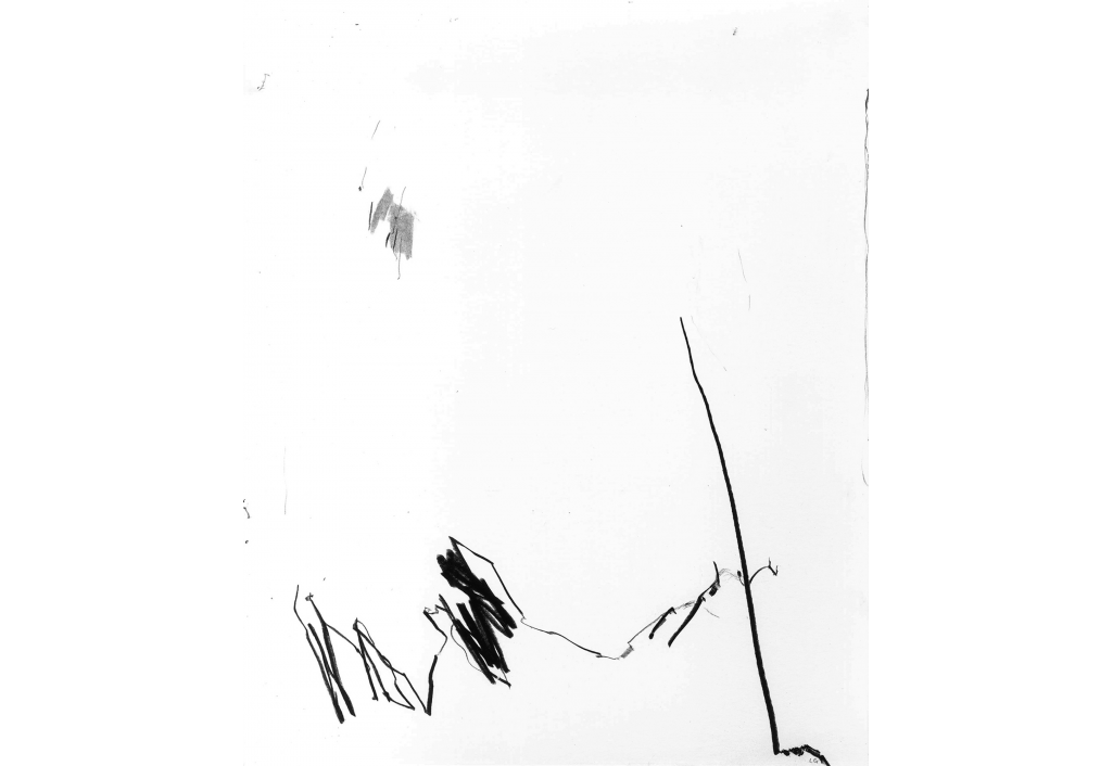 Œuvre au noir