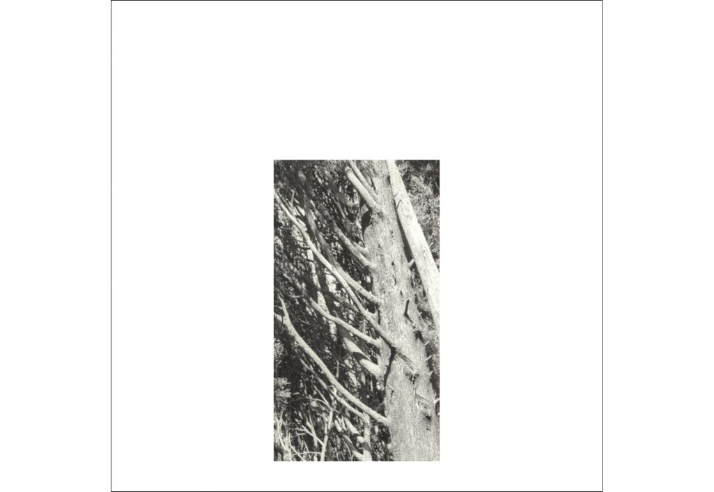 fragments 2a