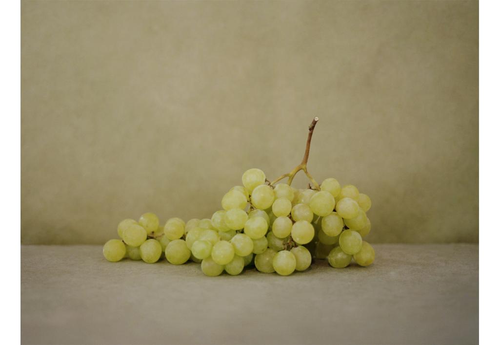 EDLS - L'élégance du raisin