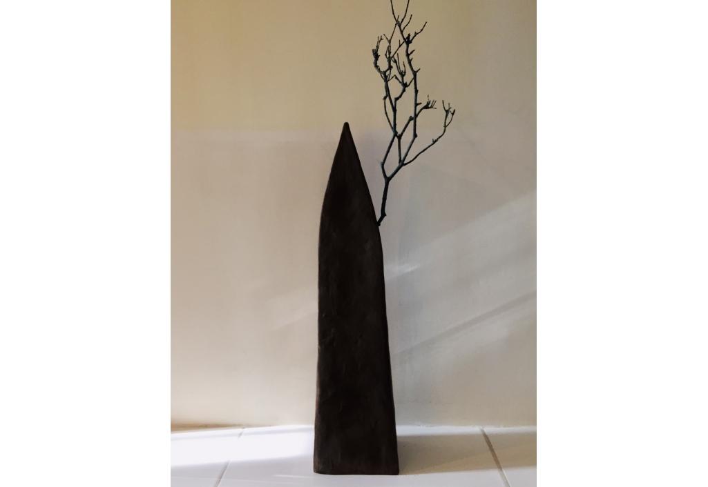 Maison arbre noire 4