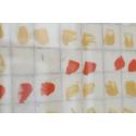 Franchissement des bords rouge et jaune