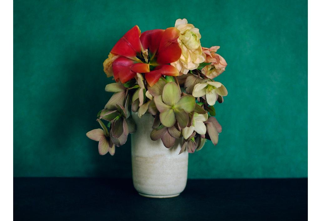 Bouquet, Roses de Noël
