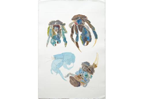 Crabe 3