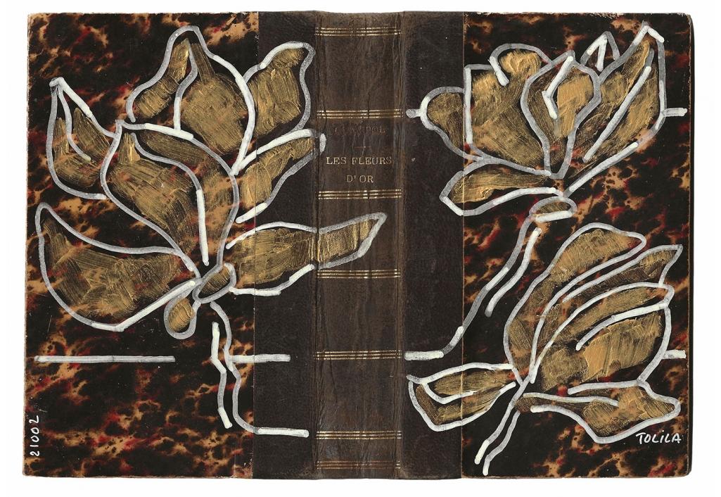 Livre ouvert 21002 - Les fleurs d'or