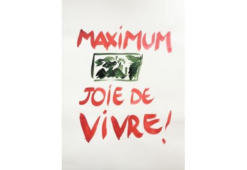 Maximum joie