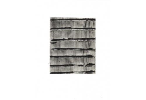 Etude pigment noir 15