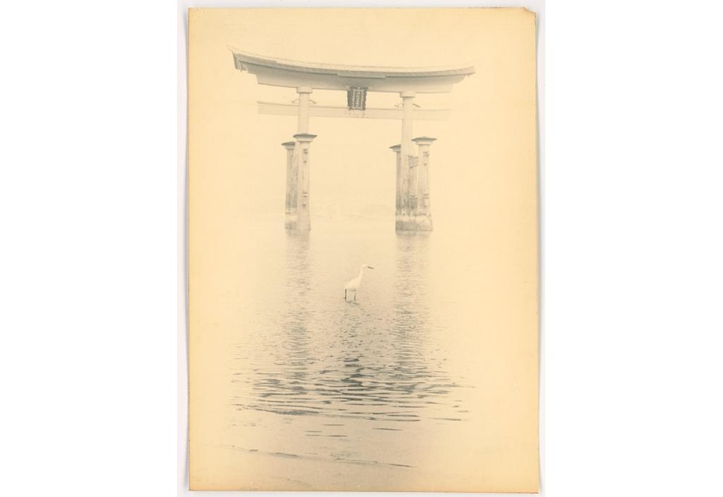 Héron, Hiroshima