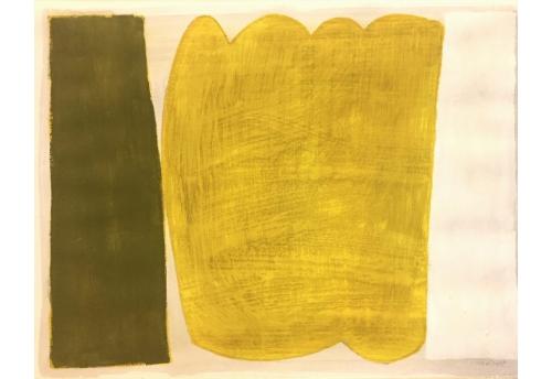 Variations surfaces couleurs 13