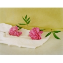 Bouquets - Pivoines