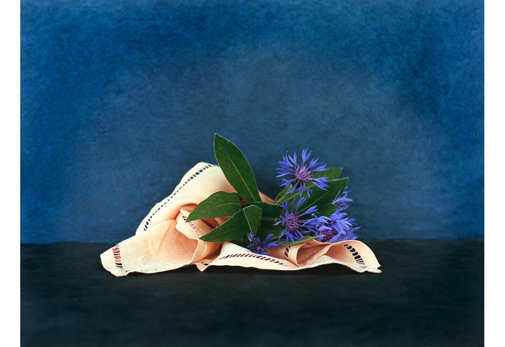 Bouquets - Bleuets