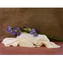 Bouquets - Iris 2