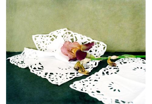 Bouquet - Iris 1