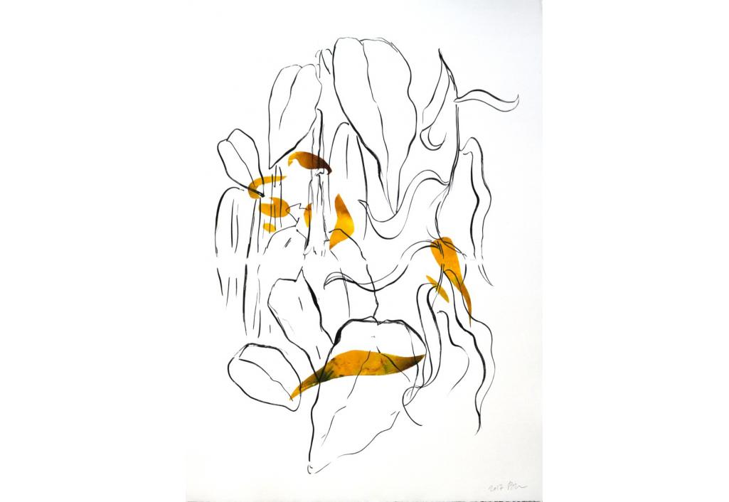 Hélianthe 4 Engraving Isabelle Beraut Zeuxis