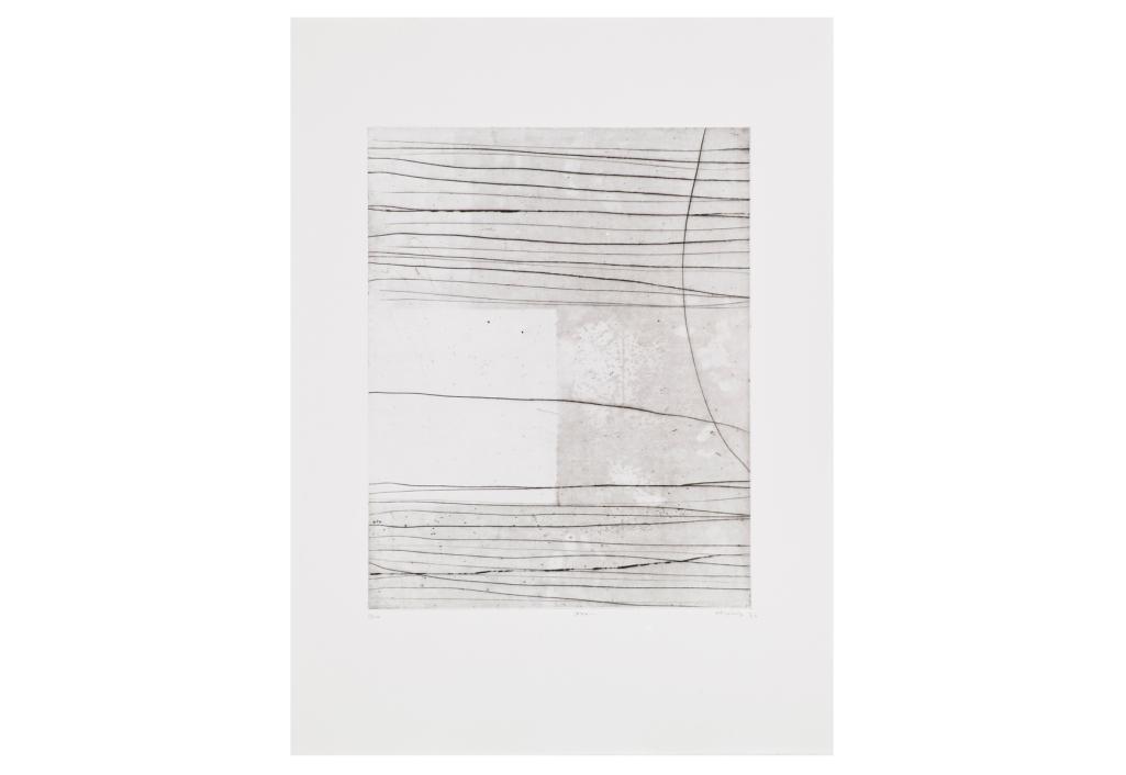 N17 Oeuvre sur papier Renaud Allirand Zeuxis
