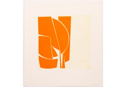 Cover 1 Orange